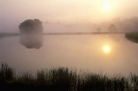 Pond at Sunrise with Morning Mist