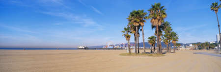 pier: This is the Santa Monica Beach and pier with its amusement park. There are palm trees in the foreground. Stock Photo