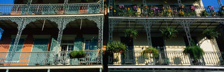This shows two buildings in the historic French Quarter on Bourbon Street. The buildings have lattice work railings with potted flowers decorating the balconies. There are also large fern plants hanging from the railings.