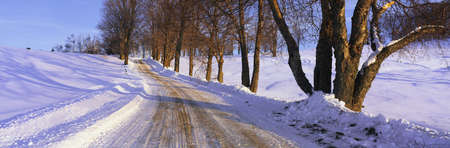 winter sunrise: This is a snowy road at sunrise. It shows Winter in New England with snow in the trees and tire tracks through the snow on the road. The road is lined on either side with trees. Stock Photo