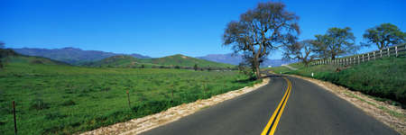 This is a road in spring in the Santa Ynez Mountains,. There are oak trees surrounding the road and a green field. photo