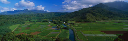 This is the Hanalei Valley Overlook. These are the fields of Toro.