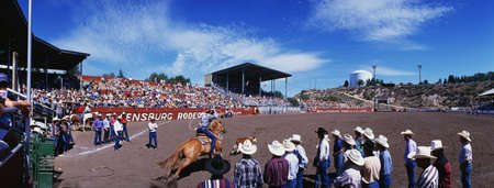 This is the 75th Ellensburg Rodeo that took place on Labor Day, 1997. The Rodeo has taken place from 1923 to the present. It shows a rider on horseback with a lasso riding into the rink after a steer. Editorial