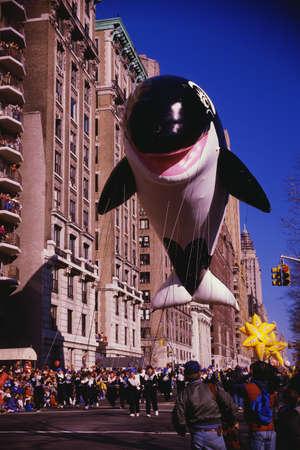 macys: Questo � il 50 � annuale Thanksgiving Day Parade di Macy a Central Park. Vi � un gigante bianco e nero pallone delfino venuta gi� la strada alla sfilata.