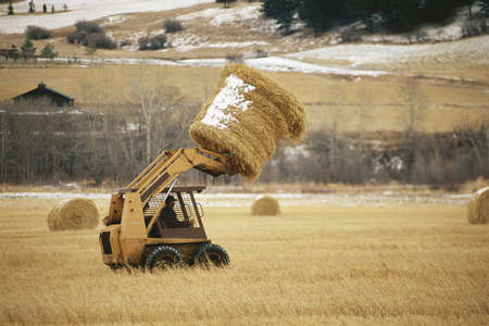 loader: Skip loader moving hay bale Stock Photo