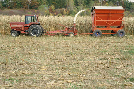 forage: Forage harvester Stock Photo