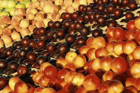 画面上の新鮮な果物