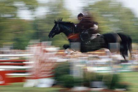 salto de valla: Caballo y jinete en el salto de la cerca del aire Foto de archivo