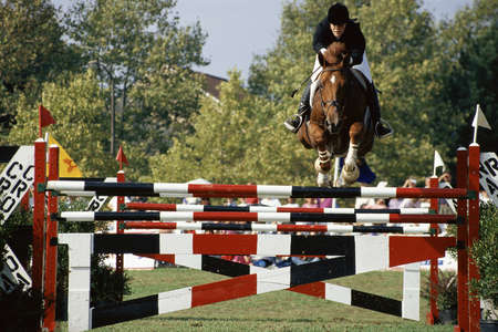 pastimes: Horse and rider jumping over fence