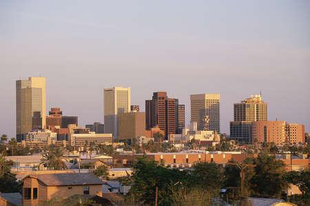 ave fenix: Phoenix, AZ en la puesta del sol