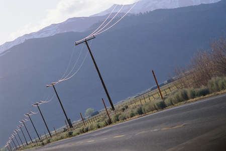 telephone poles: Telephone poles running along roadside