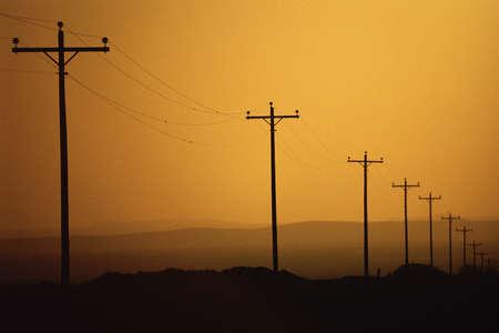 Phone lines lining road Stock fotó