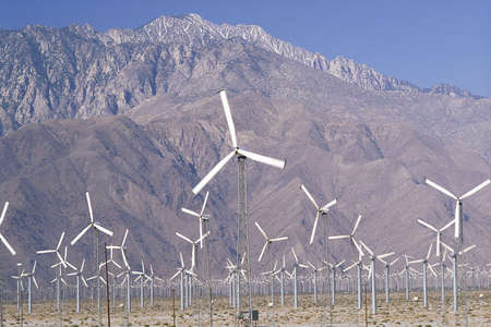 palm springs: Wind farm with hills in background, Palm Springs, California