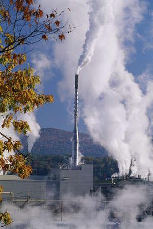 smokestack: Smokestack at paper mill
