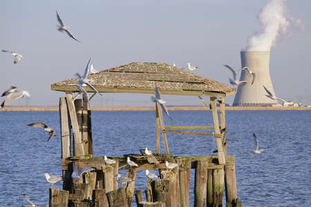 Wooden structure on pier with nuclear reactor in background photo