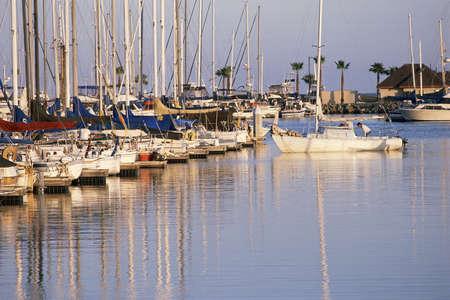 docked: Barcos atracados en el puerto deportivo