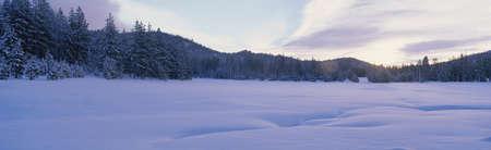 panoramics: Winter scene, Nevada