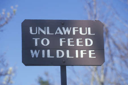 unlawful: A sign that reads �Unlawful to feed wildlife�