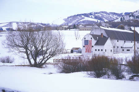 barns winter: American Flag Hung on Barn in the snow, Park City, Utah