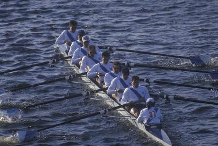 sculling: Team of Male Rowers, Charles Regatta, Cambridge, Massachusetts