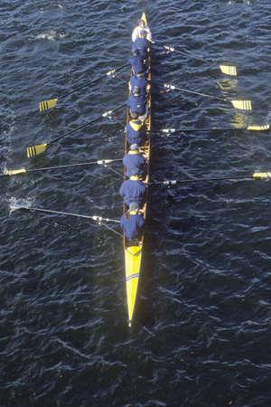 Team of Female Rowers, Cambridge, Massachusetts