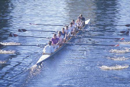 漕手、ケンブリッジ、マサチューセッツ州のチーム