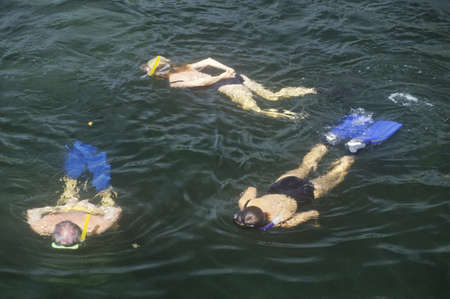 Group of Snorkelers in water, Key West, FL