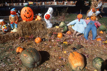 Halloween Characters in Pumpkin Patch, Maggie Valley, Tennessee Stock Photo - 20526310