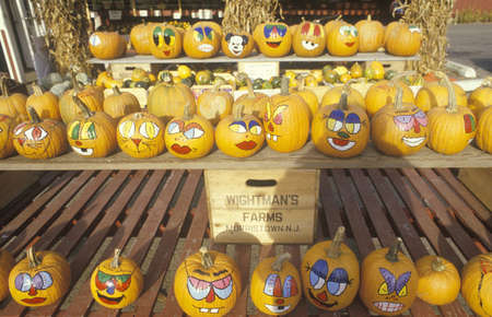 A Stand with Painted Pumpkins, New Jersey Stock Photo - 20514004