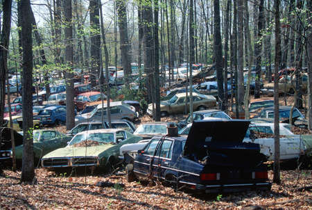 junked: Junk cars in a forest in Virginia Editorial