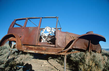 junked: A deserted car with a cow skeleton driving in the Great Basin National Park, Nevada