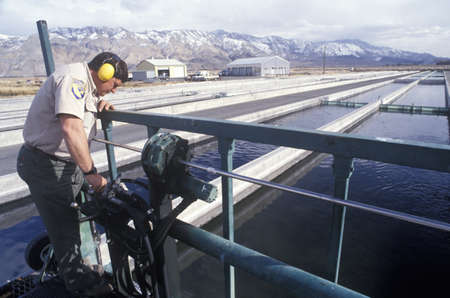 agricultural engineering: Cleaning waters at the Fish Springs Hatchery, North of Lone Pine, CA