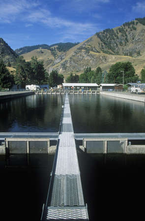 Rapid River Ranch Salmon Fish Hatchery on Route 55, ID