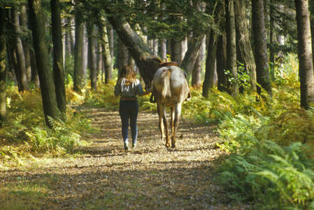reins: Woman with horse by the reins on trail in Autumn