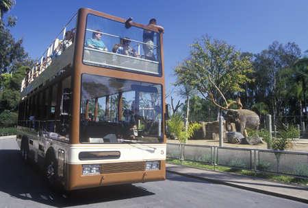 the zoo: Safari Bus y los turistas en el zool�gico de San Diego, CA