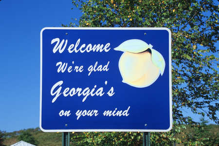 cultural artifacts: Welcome to Georgia Sign