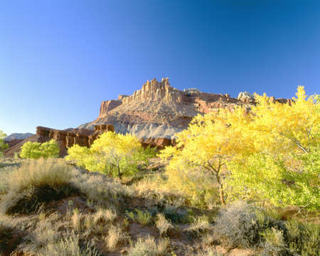 ut: Autumn, Capitol Reef National Park, Southern Utah