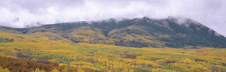 national forest: Oto�o nubes en Kebler Pass, Bosque Nacional Gunnison, Colorado