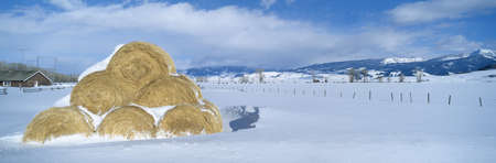 Haystacks and Snow, Moose-Wilson Road, Jackson, Wyoming