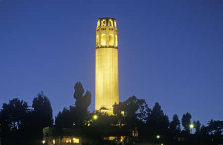 coit tower: Night shot of Coit Tower in San Francisco, California