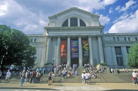 National Museum of Natural History - Smithsonian Institution, Washington, DC