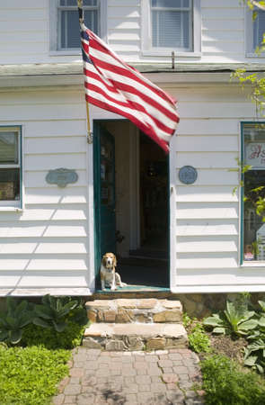 Beagle sits on porch with American flag waving in doorway of Alexandria home, Washington D.C.