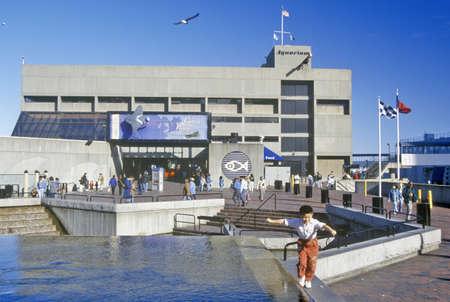 sightseers: New England Aquarium, Boston, Massachusetts Editorial
