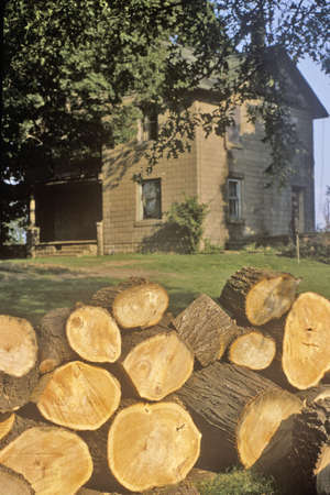pile dwelling: Firewood in Front of Rural Home, South Bend, Indiana