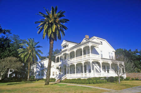 Old Plantation in Biloxi, MS with palm trees