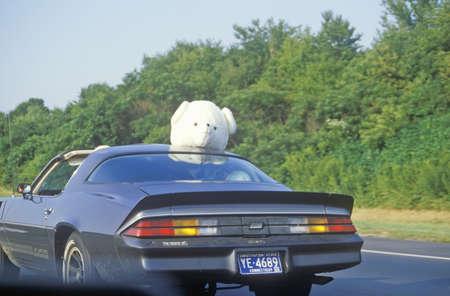 turnpike: Animal de peluche en la parte superior del coche en New Jersey Turnpike, NJ