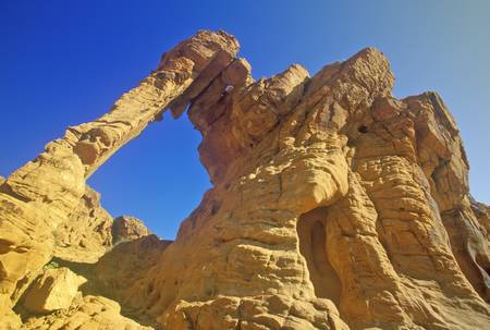nv: Sandstone formation called Elephant Rock in Valley of Fire State Park, NV Editorial