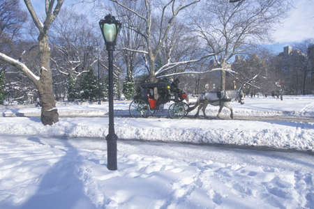 Horse carriage ride in Central Park, Manhattan, New York City, NY after winter snowstorm