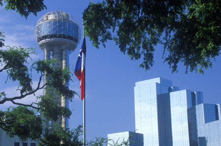 View of Reunion Tower and Hyatt Hotel in Dallas, TX through trees with state flag