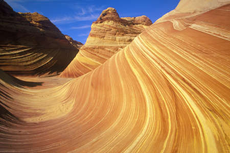 slot canyon: Close up of sandstone stripes, The Wave on Kenab Coyote Butte, BLM, Slot Canyon, UT